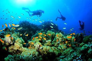 Zanzibar_Destinations.jpg