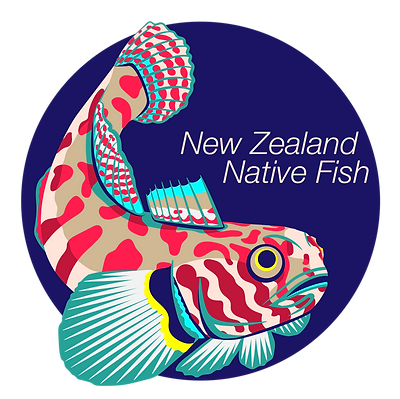 NZNF_final_transparent.png