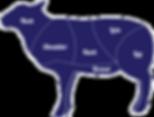 animals-lamb.png