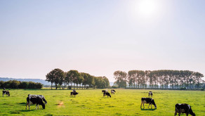 This is no April fools joke; we must tighten agricultural nutrient cycles