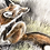 Thumbnail: Itchy Fox, charcoal and Watercolour painting on paper  - 400mm x 300mm