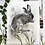 Thumbnail: Shy Hare - Mixed media and charcoal drawing on paper - 50cm x 65cm