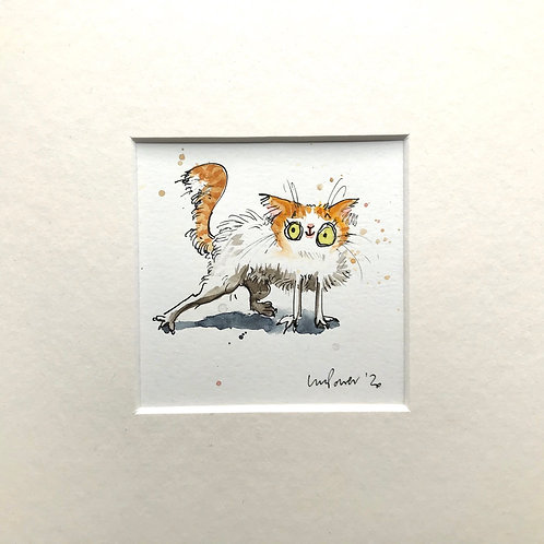 'Ginger and White' cat painting- watercolour and ink drawing