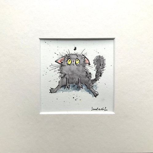 'Grey cat and fly' cat painting- watercolour and ink drawing