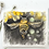 Thumbnail: Honey Bee charcoal and Watercolour painting on paper  - 240mm x 300mm