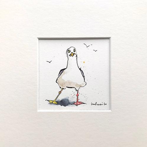 Miniature seagull painting – 'Bemused'