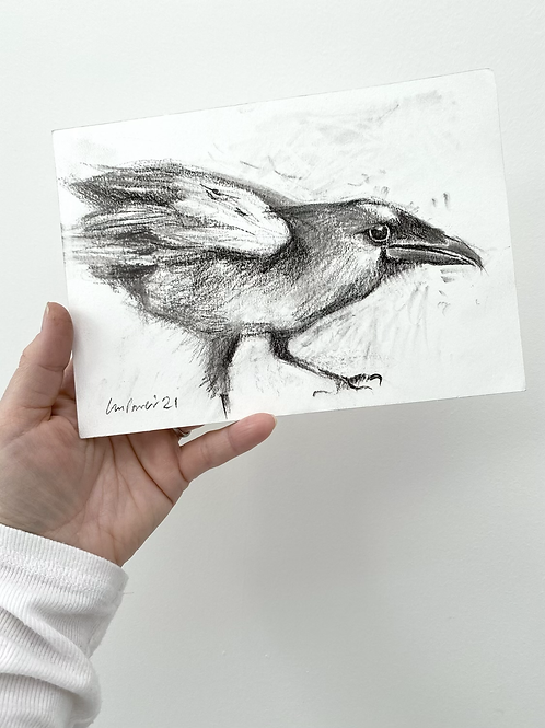 Raven charcoal drawing on paper  #05 - A5 148mm x 210mm