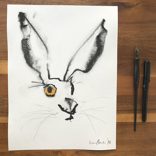 Hare #37 - ink drawing with watercolour
