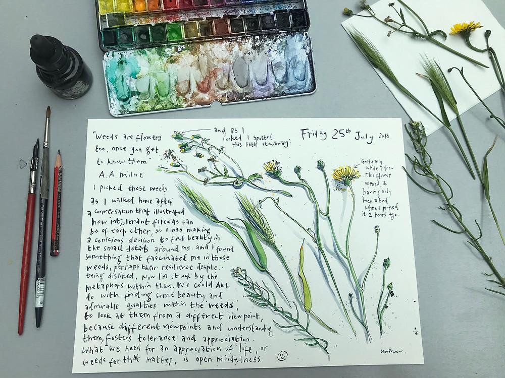 Art Journal ink illustration of weeds