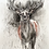 Thumbnail: Red Stag - Mixed media and charcoal drawing on paper - 50cm x 65cm