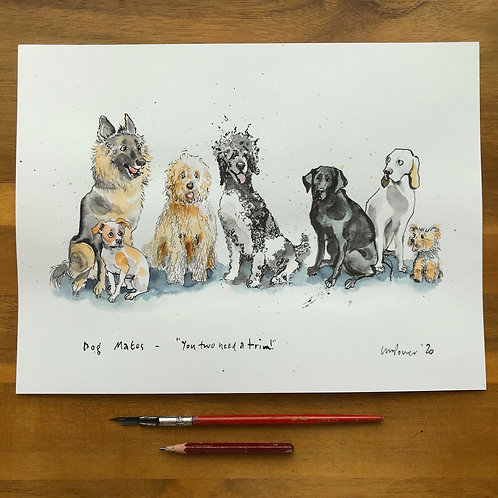 Dog Mates, 'You Two need a Trim' - ink and watercolour Dog drawing
