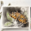 Thumbnail: Comma Butterfly, charcoal and Watercolour painting on paper  - 240mm x 300mm