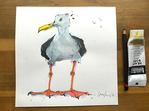 'Seagull Grumps' - A Seagull painting