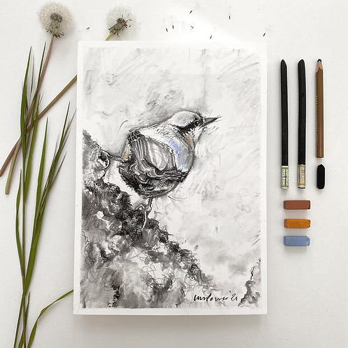 Nuthatch - charcoal drawing on paper - A4, 295mm x 210mm