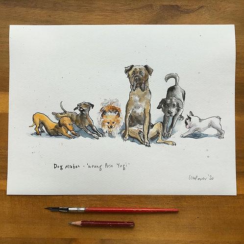 Dog Mates, 'Wrong Pose Yogi'  - Ink and watercolour painting