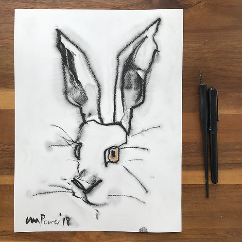 Hare #39 - Ink drawing with watercolour