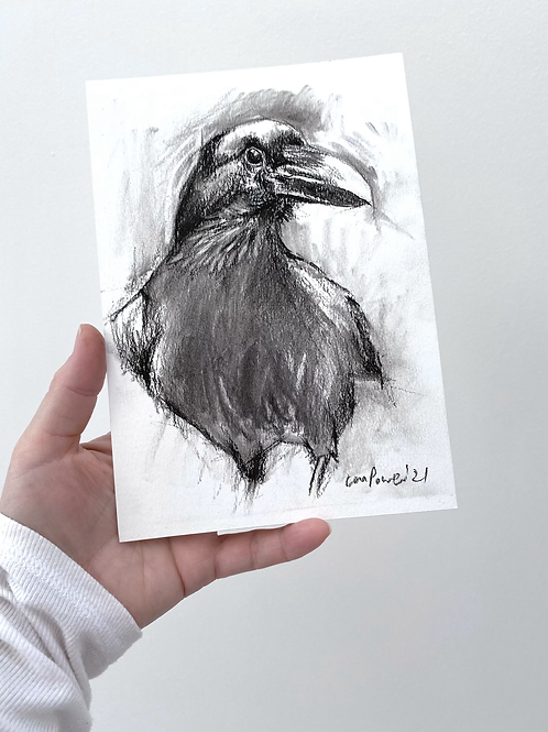 Raven charcoal drawing on paper  #01  - A5 148mm x 210mm