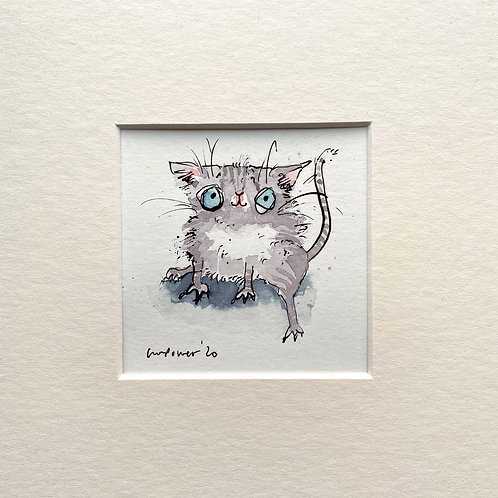 'Grey tabby' cat painting- watercolour and ink drawing