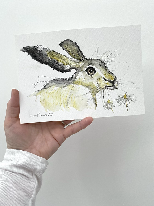 Daisy Hare #08 - charcoal and Ink wash drawing on paper - A5 148mm x 210mm