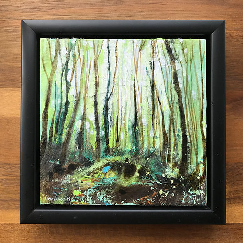 'Woodland Light' - 15cm x 15cm Framed  landscape