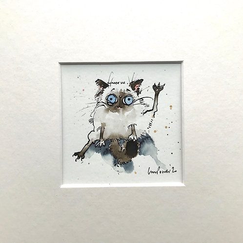'Ragdoll' cat painting- watercolour and ink drawing