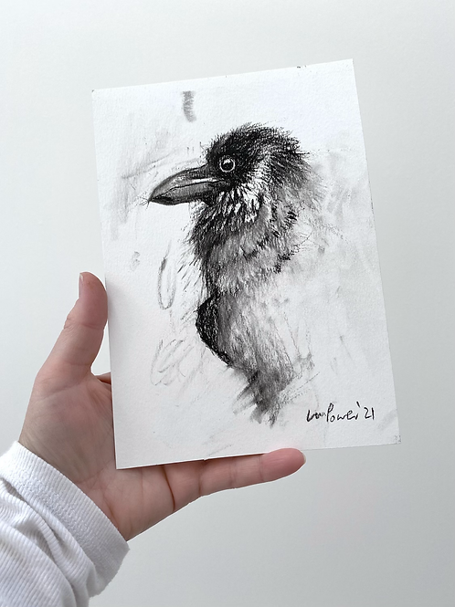 Raven charcoal drawing on paper  #02 - A5 148mm x 210mm