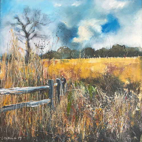 'Late Summer fields and fence'