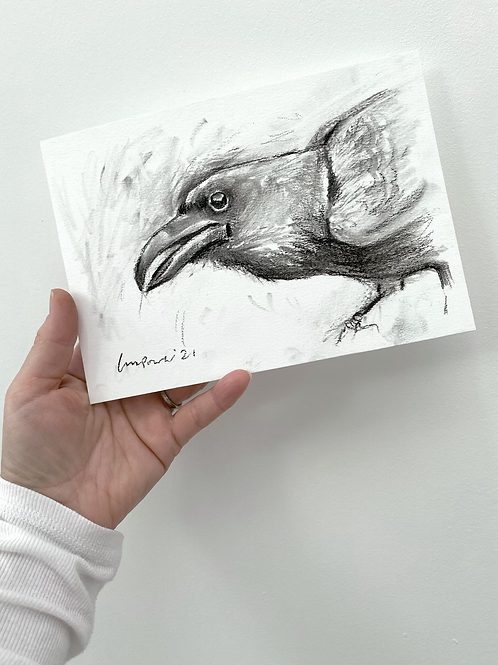 Raven charcoal drawing on paper  #04 - A5 148mm x 210mm