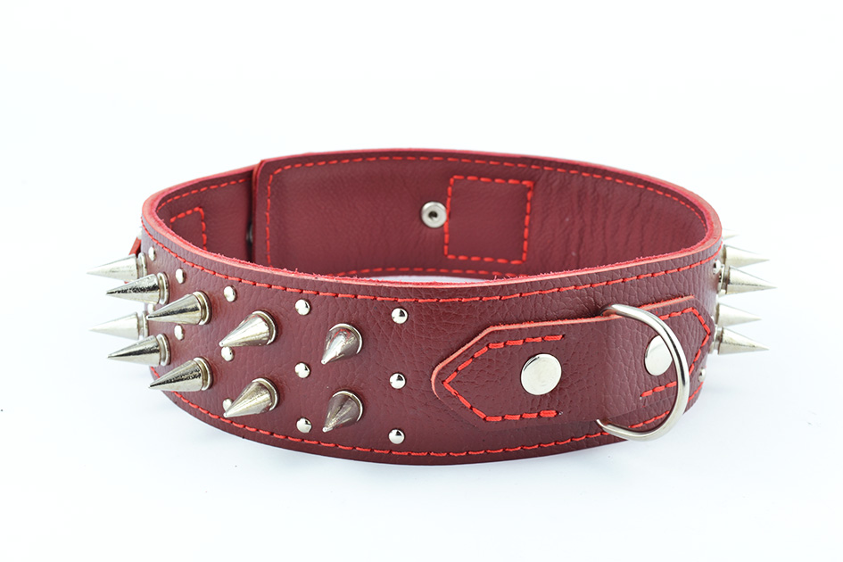 1761 Leather collar with spike