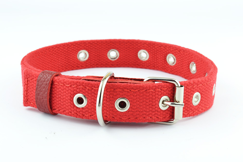 0612 Polycotton+leather collar