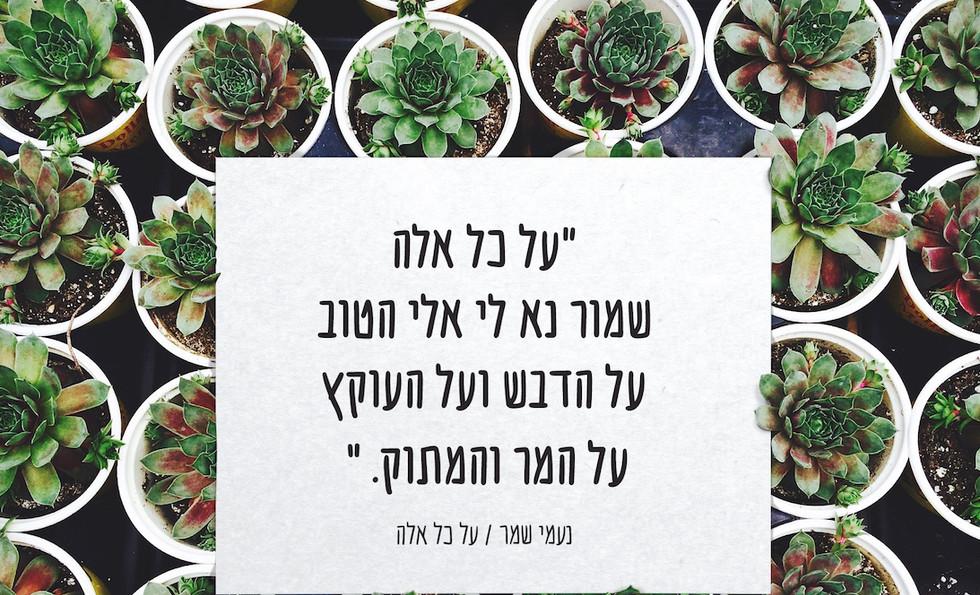 Font - Dishmish - sample use