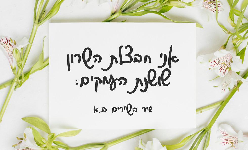 Font - Shoshana - sample use