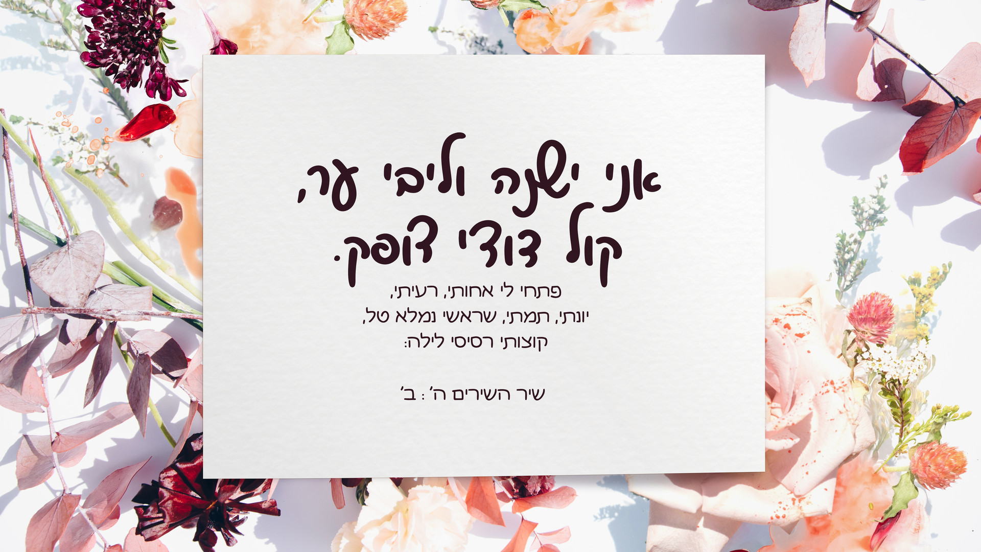Shoshana - Malkush - Hebrew font pairing sample