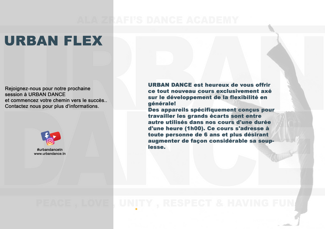 URBAN FLEX .png
