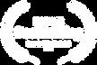 NOMINEE - Best Editing - Unrestricted Vi