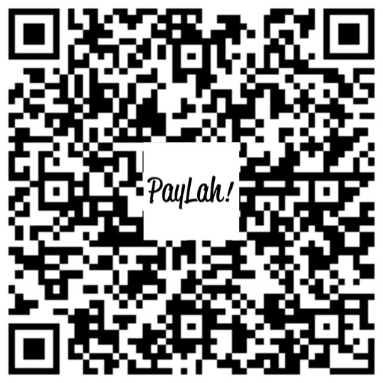 Paylah QR Code