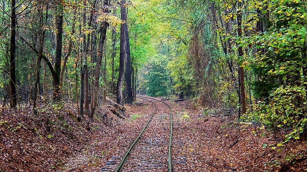 """Train Tracks"""