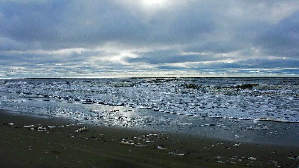 The SC Coast