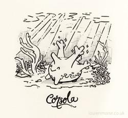 Corsola
