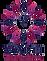 Logo%20N_edited.png