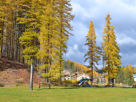 Fall for Fall in Kimberley, BC!