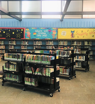 Library Pic 6.jpg
