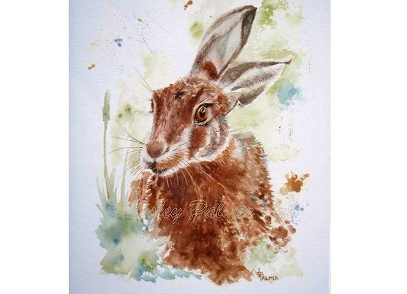 Hark Back Hare