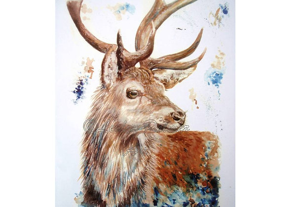 STIRLING STAG
