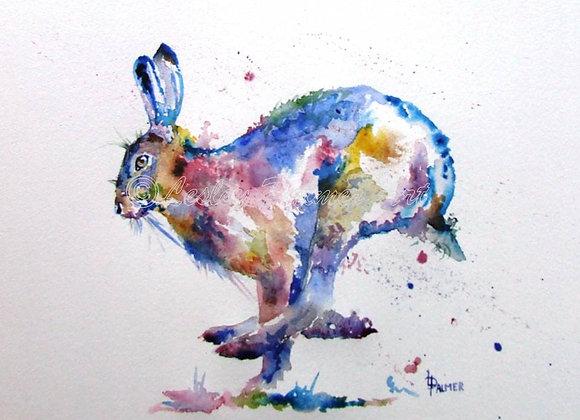 Hopscotch Hare