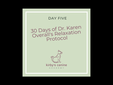 Day Five - 30 Days of Dr. Karen Overall's Relaxation Protocol