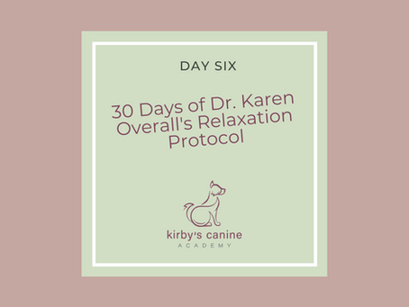 Day Six - 30 Days of Dr. Karen Overall's Relaxation Protocol