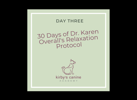 Day 3 - 30 Days of Dr. Karen Overall's Relaxation Protocol