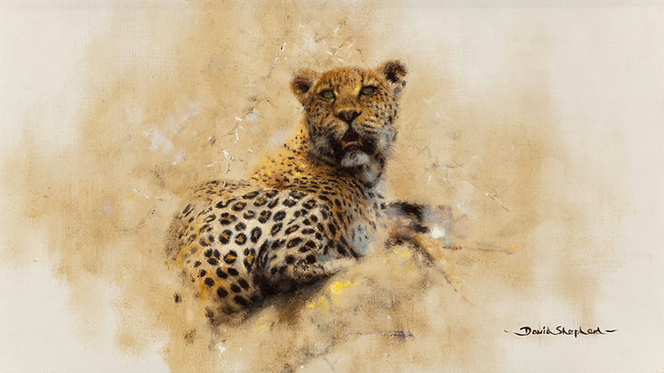 DAVID SHEPHERD | Leopard