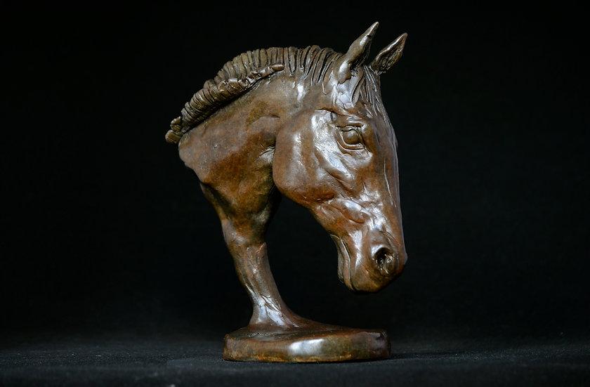 Horse Head (Frankel)